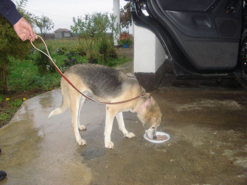 Michelle gets a meal arrivg at her new home