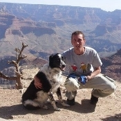 No buddy left behind afghan dog us soldier